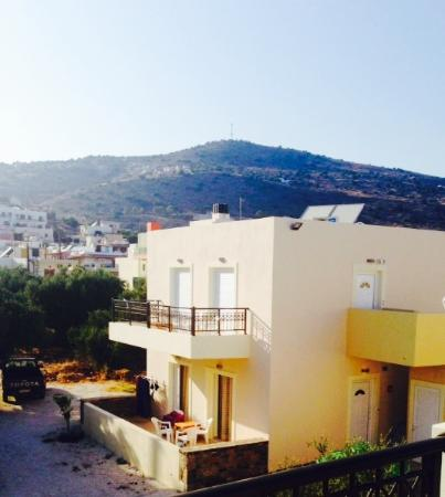 Olive Grove Apartments: Beautiful Olive Grove view