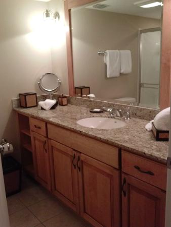 The Residences at Biltmore: Guest bathroom