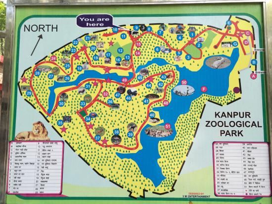 Map Picture of Allen Forest Zoo Kanpur TripAdvisor