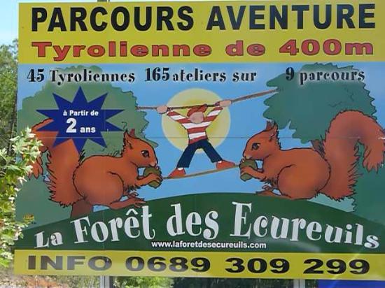 Saint-Vincent-le-Paluel, France : La forêt des écureuils