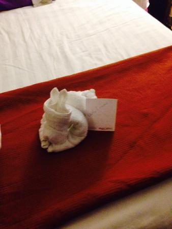 Drury Inn & Suites Fenton-St. Louis: The towel doggy that the housekeepers made for our daughters :)