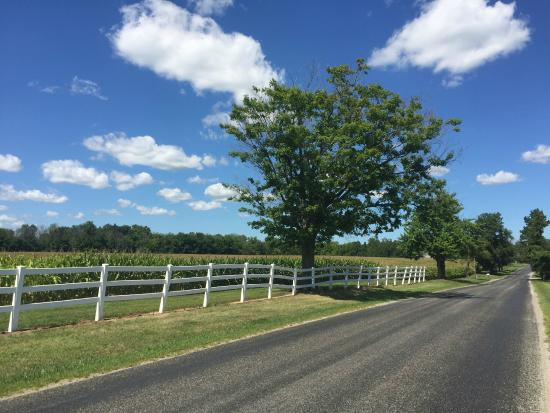 Amherst, OH : Quiet country roads