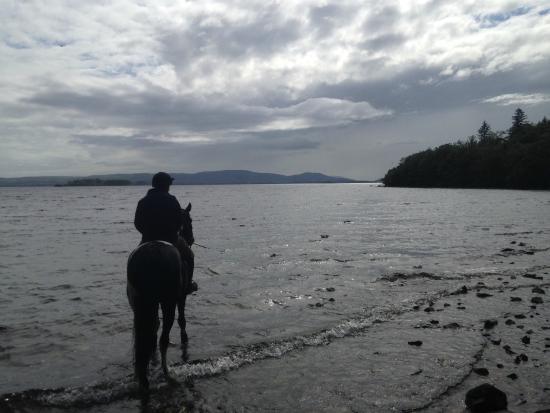 Ashford Equestrian Centre: Ashford Castle Equestrian Centre Lough Corrib2