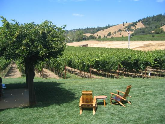 Philo, Калифорния: Navarro Vineyards