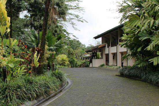 Tabacon Thermal Resort & Spa: Del Restaurant a nuestra habitación