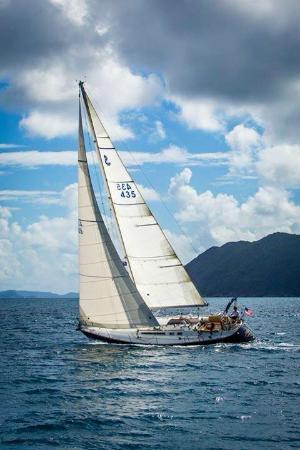 Charleston Sailing Trips