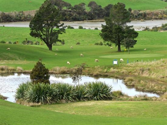 ‪Raglan Golf Club‬