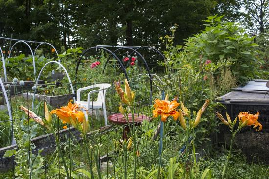 Mount Holly, VT: One of the lovely gardens