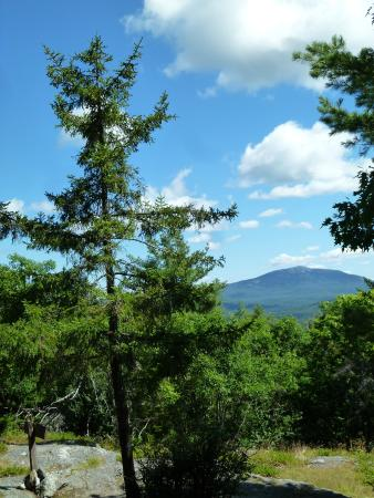 Rhododendron State Park: view of grand monadnock in the distance