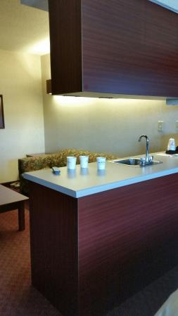 Microtel Inn & Suites by Wyndham Hamburg: Counter area...lots of receptacles in the room