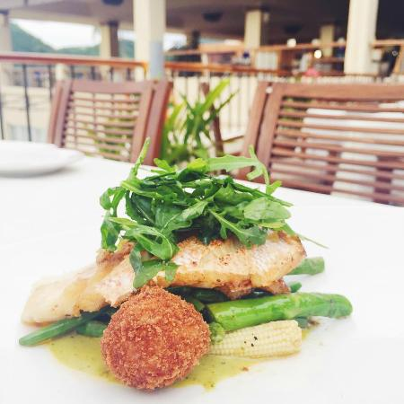 Vista Grill : Catch of the Day - Fresh fish filet from the bay