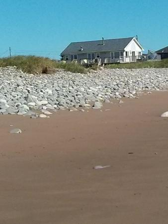 East Lawrencetown, Canada: Moonlight Beach Suites has been welcoming visitors to Lawrencetown Beach since 1996