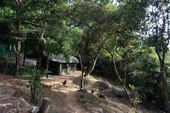River Garden Resort & Camp Site: Tent we stayed.