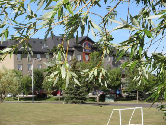 Best Western Plus The Inn at St. Albert: Between the leaves at the park
