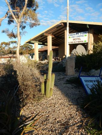 Madura Roadhouse: Cactus garden