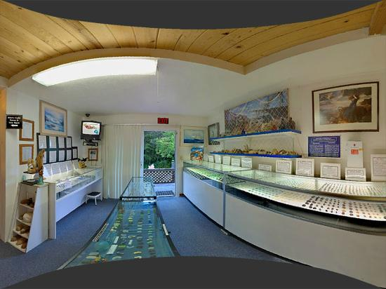 Fort Bragg, Kalifornia: Sea Glass Museum Main Room