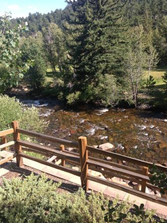 Beaver Brook on the River: A view from the studio #12