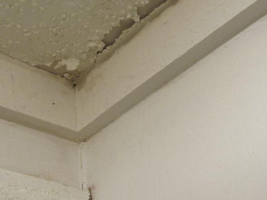 Motel 6 Erie: Mildew & chipping paint