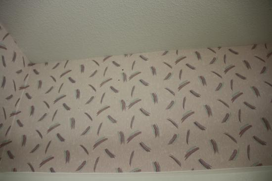 GuestHouse Inn & Suites Sutherlin: Mold on wallpaper in bathroom