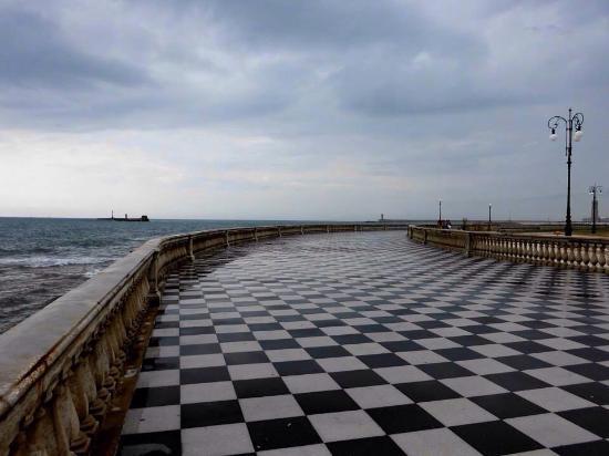 Pavimentazione a contrasto bellissima - Foto di Terrazza Mascagni ...