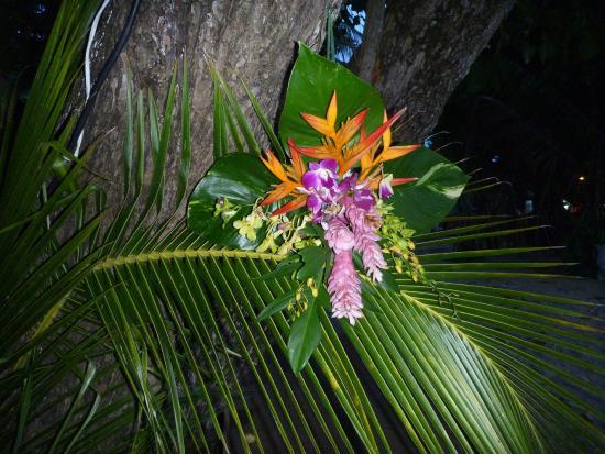 Rang Yai Island: Decoratie aan de bomen