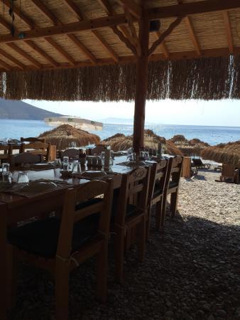 Bonito Beach Restaurant