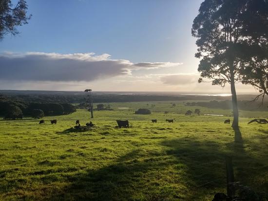Augusta Sheoak Chalets: Breathtaking view