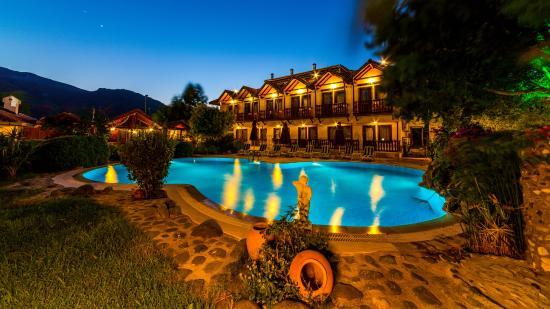 Palmetto Resort Hotel: 1