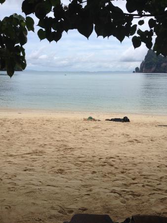 Baia Baia : The beach