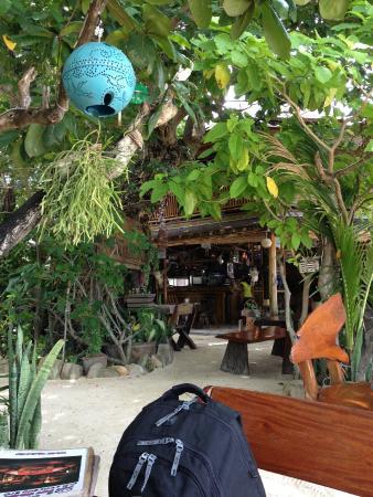Baia Baia : The Bar/Restaurant