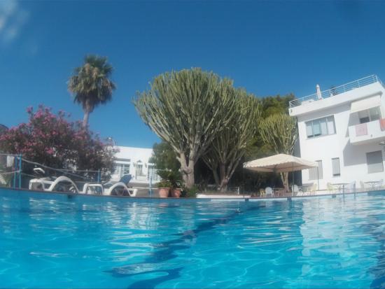 Residence Tamarea: Dalla piscina