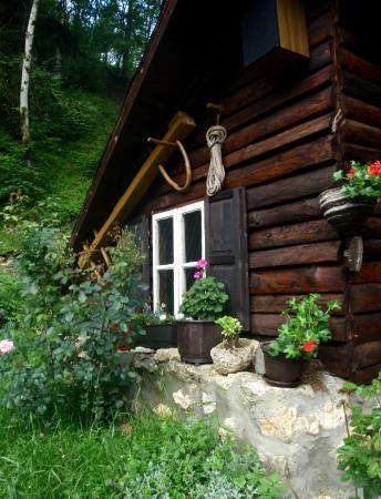 Mestrevac, Bosnia-Hercegovina: Deatils Camp Encijan