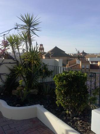 giardino terrazza - Picture of Hotel Don Paco, Seville - TripAdvisor