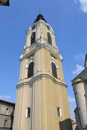 PrzemySl Cathedral & Basilica