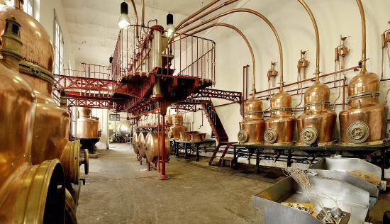 Visites de distilleries