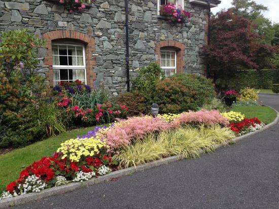 Friars Glen: flowers