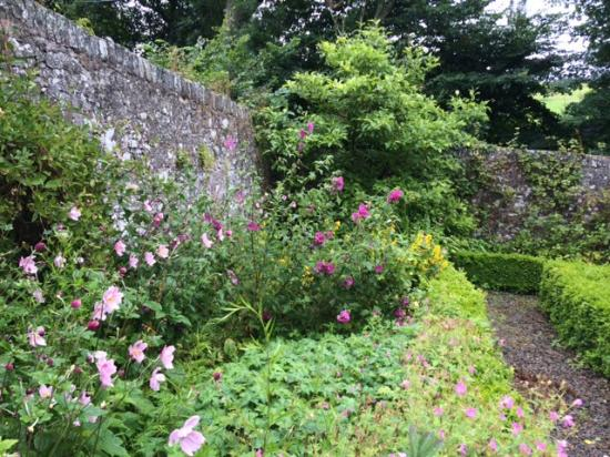 Broomhill House B&B: The walled garden