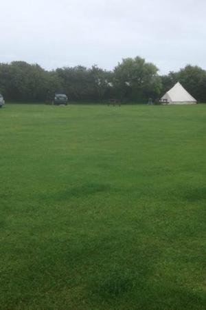 Foxdale Guest House: The Glamping Tent at Foxdale looks good.