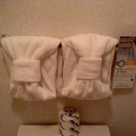 Quality Inn: Cute towel hanging.