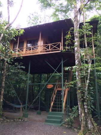 Tree Houses Hotel Costa Rica: photo0.jpg