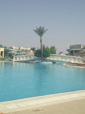 Main pool at 7 am