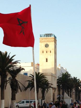 Majestic Morocco Tours Ltd - Day Tours