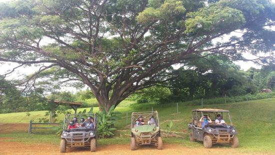 Princeville Ranch: Ready to play