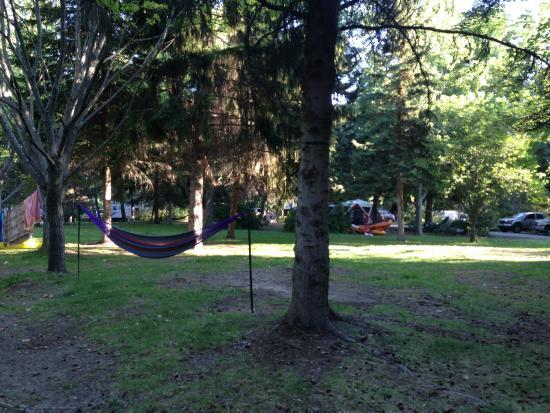 West Kelowna, Kanada: Great Hammock Trees and Nice Green Spaces