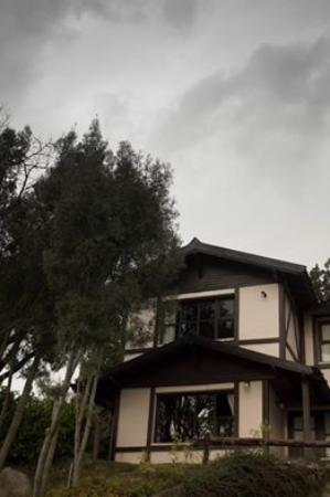 Reencuentro Apart Bungalows: La de la plantya alta fue la cabaña en la que nos hospedamos.