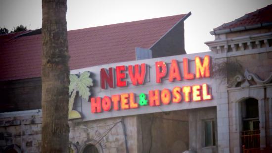 New Palm Hotel & Hostel: Entrada!