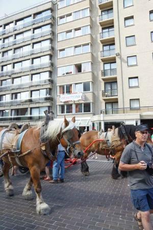 Alberthotel : paardenvissers gaan naar zee