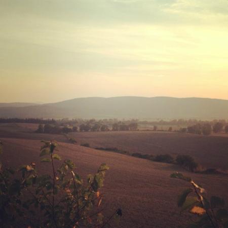 Agriturismo Podere Il Moro: uitzicht voorkant