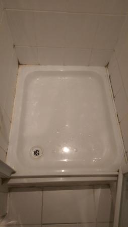 The White Horse: Mould all around the shower