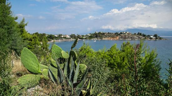 Hotel Pelagos: View from the hotel grounds